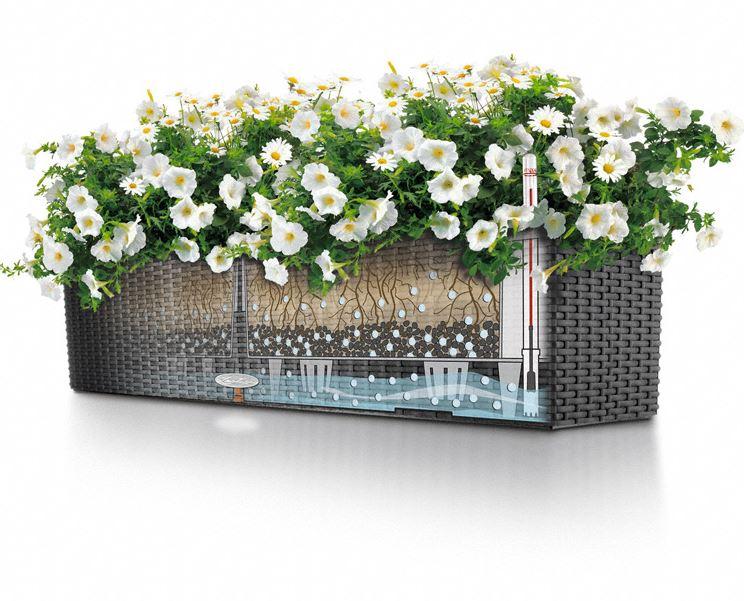 Blomlåda med bevattning