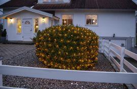 Ljusnät Serie LED Golden Warm White 2x2m