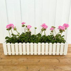 Fency blomlåda vit 75cm