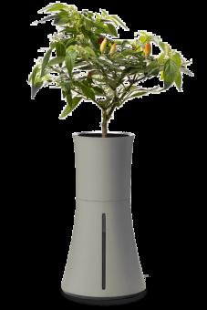 Botanium självvattnande kruka grå