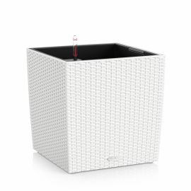 Självvattnande kruka Cube Cottage 50 i vit rotting från Lechuza.