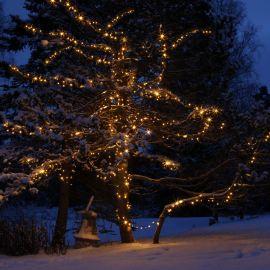 System 24 ljusslinga utomhus i träd miljöbild