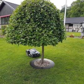 Trädring för robotgräsklippare 90cm råplåt brun