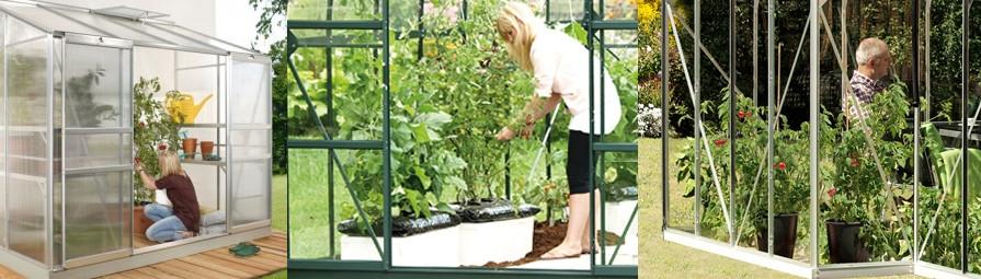 Växthus rubrikbild